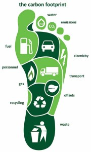 the carbon footprint2